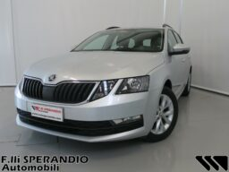 SKODA OCTAVIA WAGON 1.6TDI CR EXECUTIVE 90CV 01